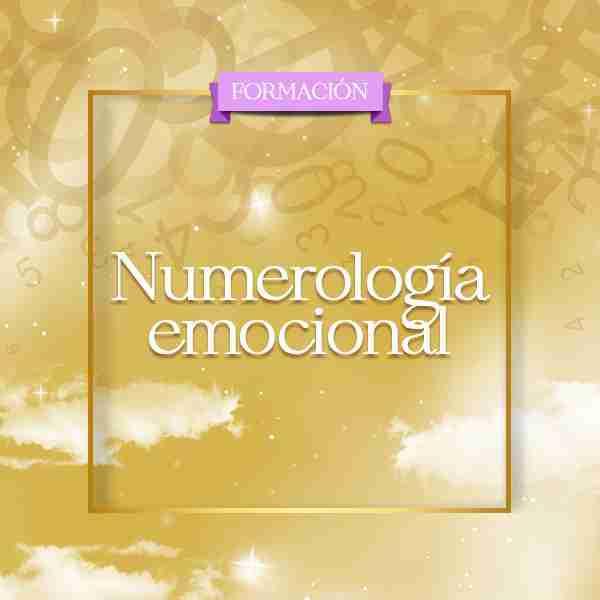 formacion en numerologia emocional