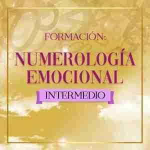 formacion en numerologia intermedia