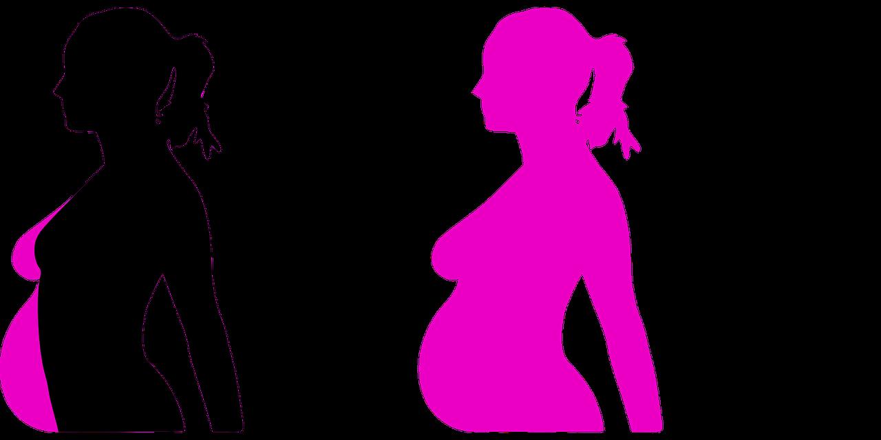 Embarazo, emociones y órganos reproductores